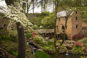 Old Mill with dogwoods in bloom, cascading waterfalls